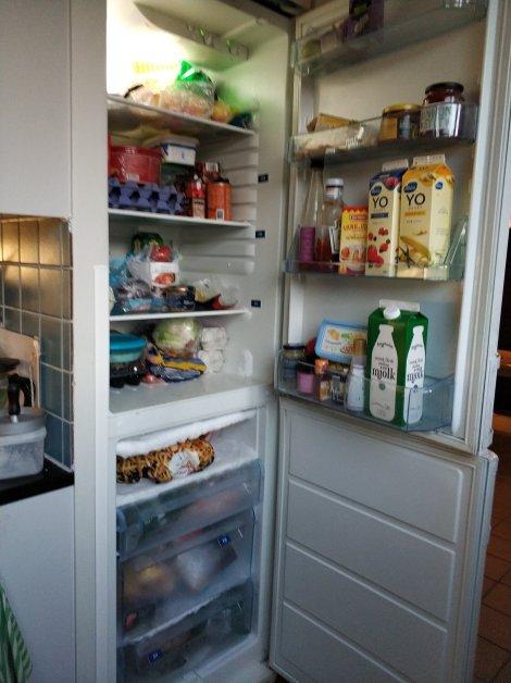 Sharing Lemari Es (Atas) & Freezer (Bawah)